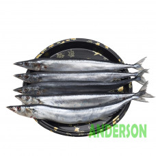 台灣 - 秋刀魚(磅)